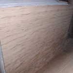 Indian Travertine (1)