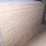 Indian Travertine (3)